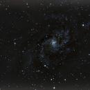 M 33,                                Stephane WAJDA