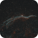The Witch's Broom, NGC 6960,                                Steven Bellavia