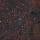 IC 1396- Elephant Trunk Nebula,                                Terrance
