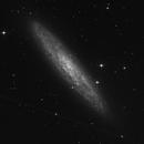 NGC 253,                                Walter Gröning