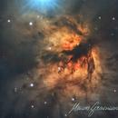 Flame Nebula - NGC 2024,                                  Maicon Germiniani