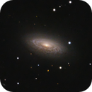 Flocculant spiral NGC 3675,                                lowenthalm