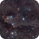 The Dark Shark Nebula,                                AstroThumb