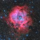 The Rosette Nebula NGC2244,                                LAUBING