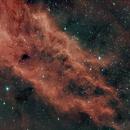 California Nebula,                                Martin Lysomirski