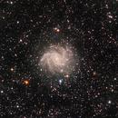 NGC 6946 - Fireworks Galaxy,                                Tim Polk