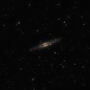 NGC 891 - Sliver Silver Galaxy,                                Michael Woodcock