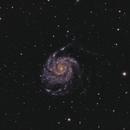 M 101 - Pinwheel Galaxy - First mono image!,                                Mark F