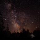 Milky Way Wilderness State Park MI,                                Stacey Fox