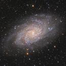 M33 Triangulum Galaxy,                                Pleiades Astropho...