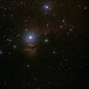 Horsehead/Flame Nebula,                                Wencel