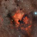 North American Nebula and Pelican Area,                                Stephen Kirk