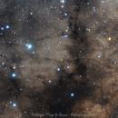 The Pipe Nebula,                                Delberson