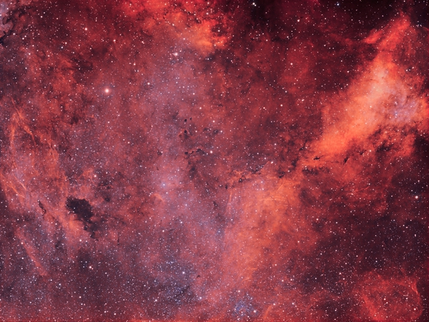 Large H-Alpha area in the constellation cygnus,                                Andre Graupe