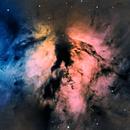 NGC 2024 The Flame Nebula in HaRGB,                                Peter Brackenridge