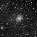 NGC 6951 w\IFN,                                Mike7Mak