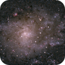 Messier 33 - Center,                                  Günther Eder