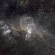 Statue Of Liberty Nebula,                                Neil Johnston
