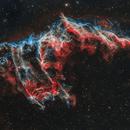 Bat Nebula (IC 1340),                                Gary Lopez