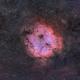 IC 1396 in SH2-131 in HSO Narrowband,                                Jonas Illner