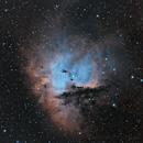 NGC 281 Narrowband BiColor Ha+OIII,                                Dave (Photon)