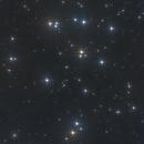 M44 The Beehive Cluster,                                Firas Haki