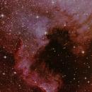 NGC7000 North America Nebula,                                ArcMinute