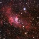 NGC 7635 The Bubble Nebula,                                John Hayes
