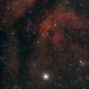 IC1318 - The Gamma Cygni Nebula,                                Steve Siedentop