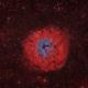 SH2-170 - Little Rosette Nebula (Bicolor RGB),                                Frank Breslawski