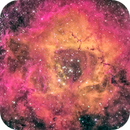 The Rosette Nebula Caldwell 49 A public data pool created by IrvingPieters,                                Miles Zhou