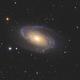 Messier 81,                                Damien Cannane