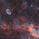 Crescent Nebula (NGC6888) imaged in SHO,                                Andrew Klinger