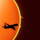 Fly Me to the Sun,                    Alessandro Merga...