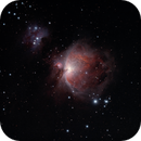 M42 Orion Nebula,                                Rick Standish