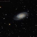 Team Work: NGC 2903,                                Edoardo Luca Radi...