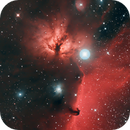 From Flame nebula via Alnitak to Horsehead - First light with Sharpstar 2032PNT,                                Riedl Rudolf