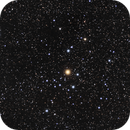 Stinging Scorpion NGC 2451,                                Claudio Tenreiro