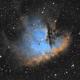 NGC 281 Pacman Nebula,                                Dave Watkins