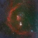 Barnard's Loop,                                jolind