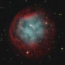 Abell 31 Planetary Nebula - Sh2-290,                                Jerry Macon