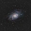 M33 (Triangulum Galaxy),                                Brian Sweeney