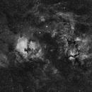 Cygnus Ha Widefield,                                Patrick Ditterline