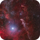 Area around Rigel: Which Head nebula and the beginning of the Barnard's loop,                                Nikita Misiura