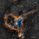 Heart Nebula,                                gnarayan