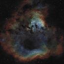 Sh2-171 /NGC 7822 - A Nebula in Cepheus - SHO-RGB,                                Daniel.P