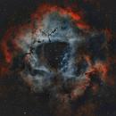 NGC 2239 - Rosette Nebula HA and OII filters only,                                Rhett Herring