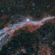 Bicolor Veil Nebula (Ha and OIII),                                Eduardo Oliveira