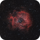Rosette Nebula Narrowband,                                Wilson