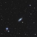 NGC2841,                                DiiMaxx